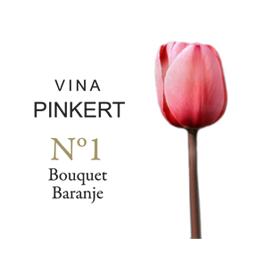 Vina Pinkert